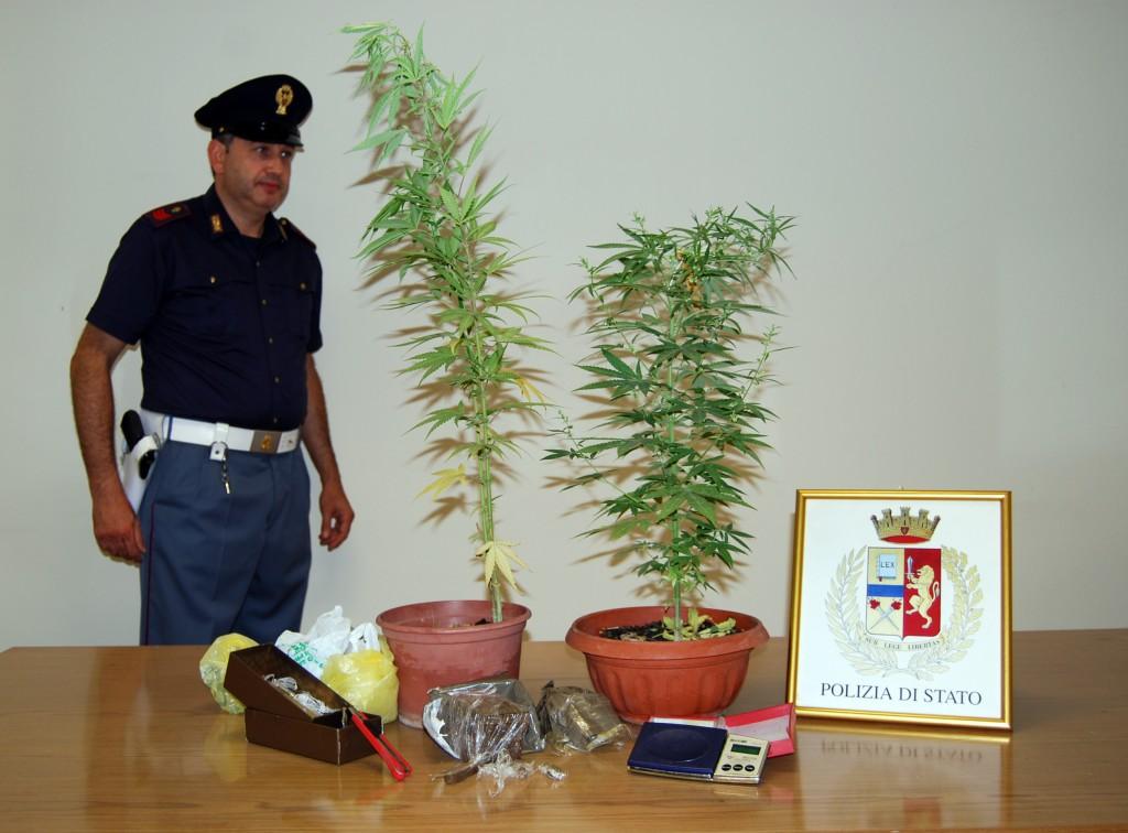 Coltiva marijuana sul balcone di casa arrestato 34enne for Coltivare meloni