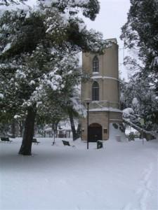 Macerata-Villa-Cozza-Torretta-con-sequoia