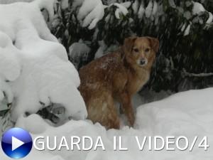 NEVE-VIDEO-4-300x225
