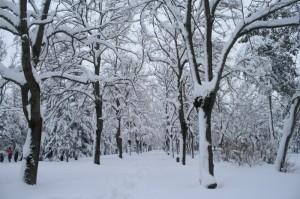 Neve-Matelica-Diletta-Fabiani-3-300x199