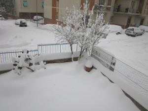 Neve-a-Macerata-foto-di-Benedetta-Piermattei-1-300x225