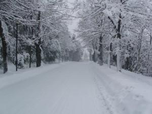 Neve-a-Macerata-foto-di-Michele-Mucci-2-300x225
