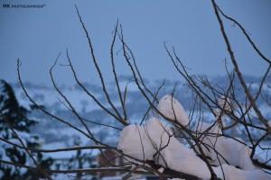 Neve-a-Tolentino-foto-di-Mike-Mari-6-300x200