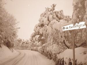 neve-a-petriolo