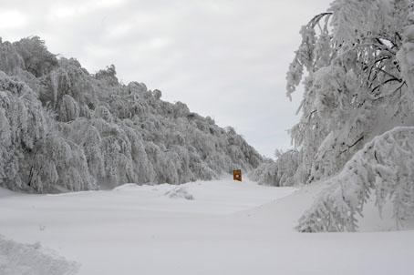 neve-panoramiche-guido-picchio-17