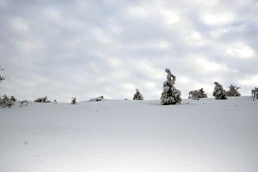 neve-panoramiche-guido-picchio-18