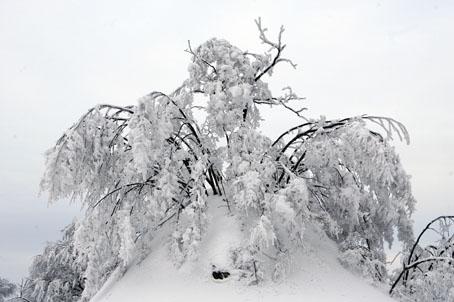 neve-panoramiche-guido-picchio-19