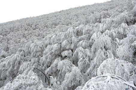 neve-panoramiche-guido-picchio-20