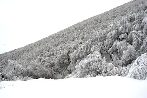 neve-panoramiche-guido-picchio-211