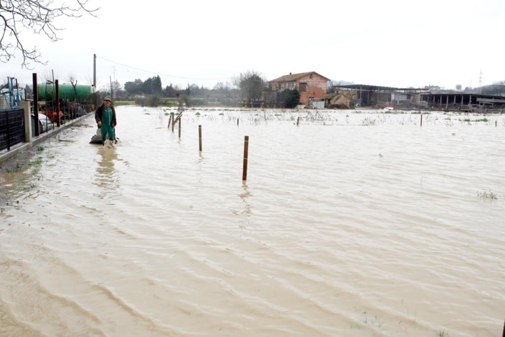 alluvione-picchio-nuova1