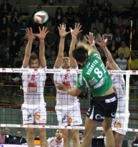 Cuneo-Lube-1-283x300
