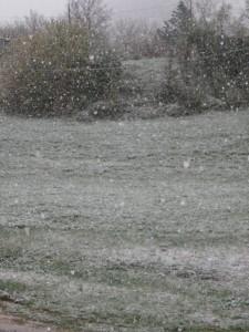 Muccia-Neve-Manuel-Casoni2-225x300