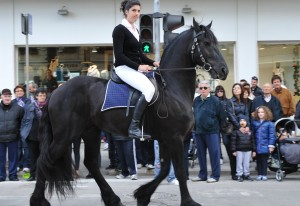 sfilata-cavalli-25-aprile-3-300x206