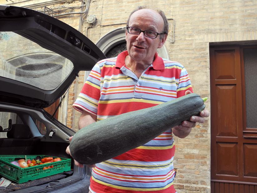 zucchina-per-cm