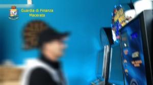 falco-cieco-1-300x168
