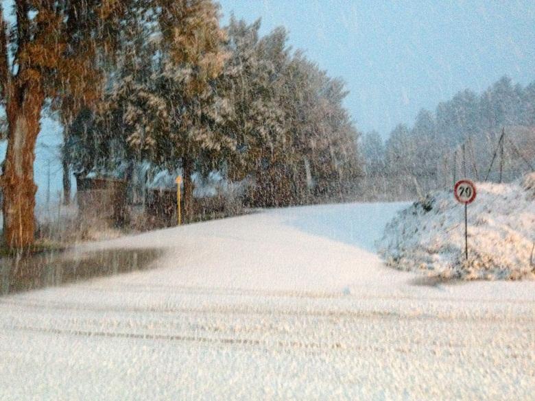 neve-muccia-dicembre-2012