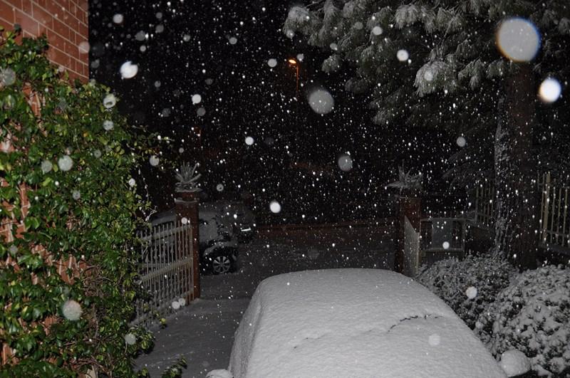 neve_dicembre_2012_giacomo_andreani-Copia