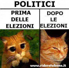politici prima elezioni